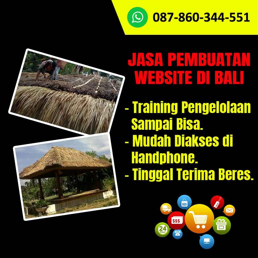 Jasa Pembuatan Website Kerajinan Atap Alang-Alang Di Bali