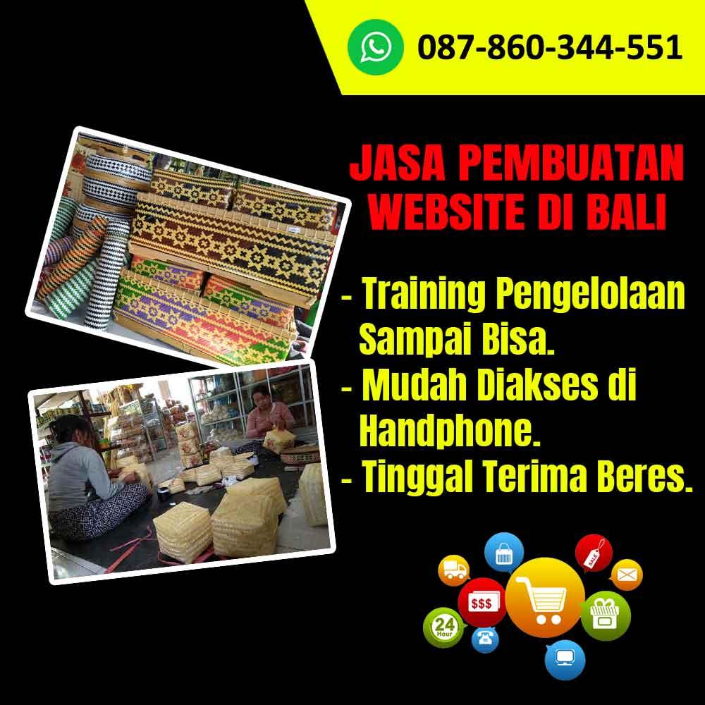 Jasa Pembuatan Website Kerajinan Sokasi Bali
