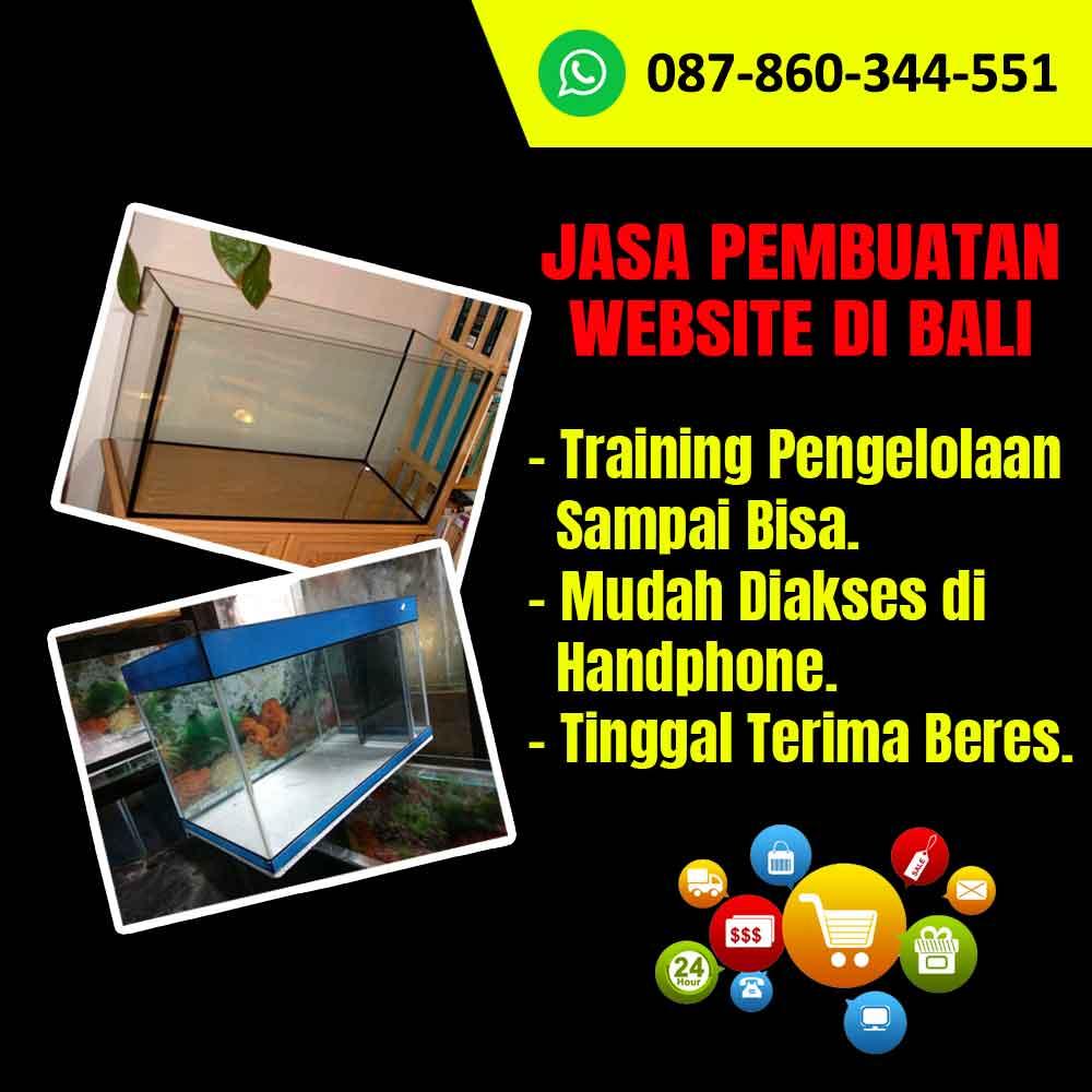 Tempat Jasa Pembuatan Website Toko Akuarium Kaca di Bali