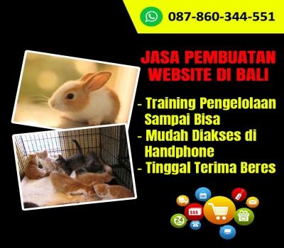 Jasa Pembuatan Website Untuk Petshop Di Bali
