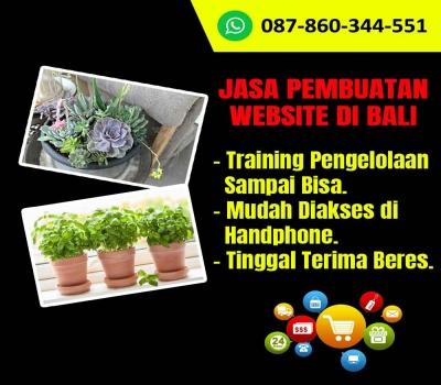 Jasa Pembuatan Website Tanaman Hias Di Bali